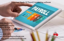 Important Needs Of Payroll Accounting software