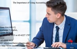 The Importance of Using Accounting Software - Copy