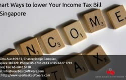 Smart Ways to lower Your Income Tax Bill in Singapore