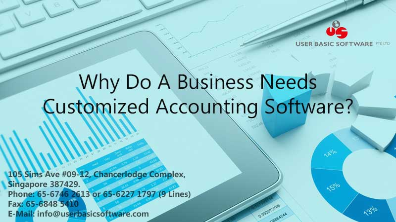 Why Do A Business Needs Customized Accounting Software?