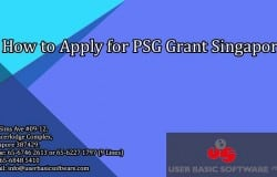 How to Apply for PSG Grant Singapore